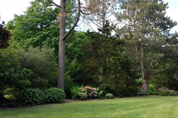 Clarence E. Lewis Arboretum