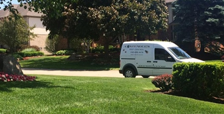 Contender's Tree & Lawn Specialists: Quality Service